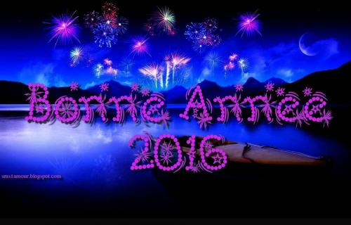 bonne-année-2016.jpg